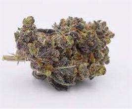 Purplewreck